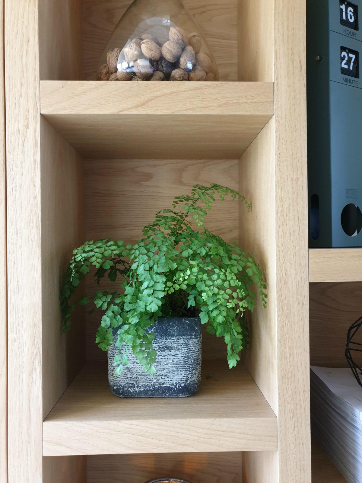 detail eiken boekenkast met plant